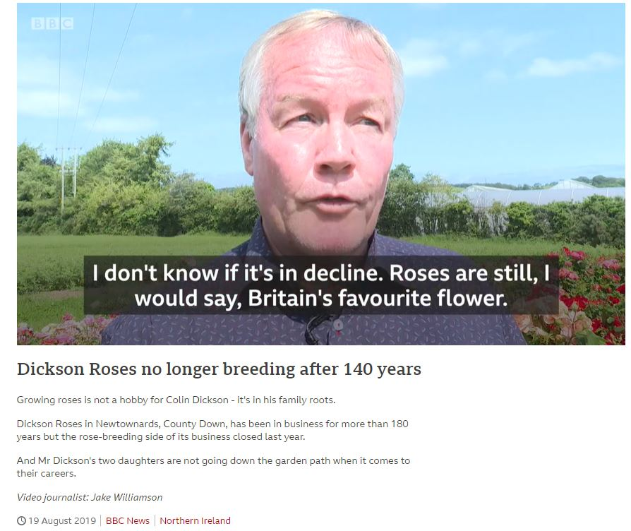 Dickson roses BBC 2019