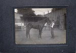 Portraits of youngest son Albert with horse 1914-17