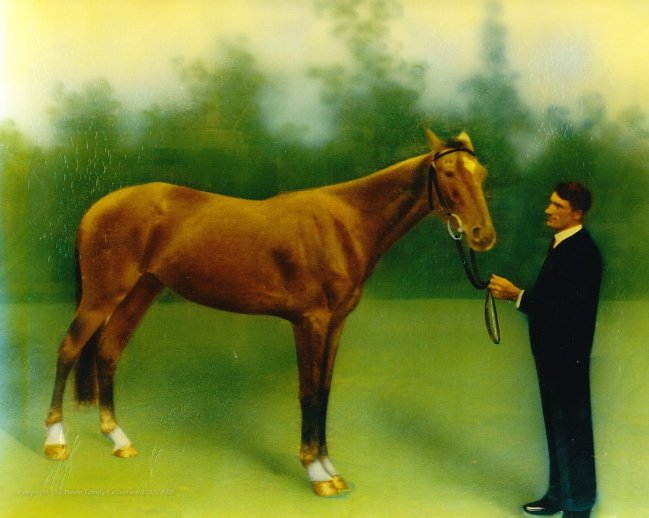 Albert Nevin and horse, painted photograph 1917
