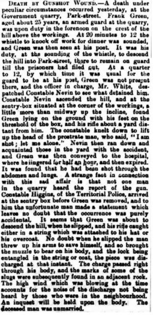 John Nevin Mercury 15 May 1882