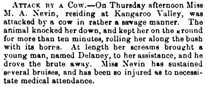 Mary Nevin attacked by a cow 1 Feb 1873