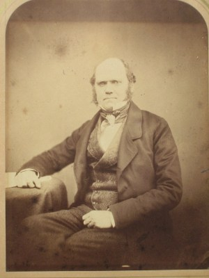Photograph of Charles Darwin by Maull and Polyblank