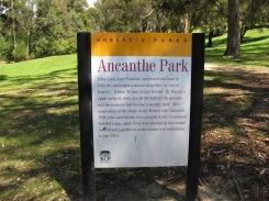 Ancanthe Park, Lenah Valley, Tasmania