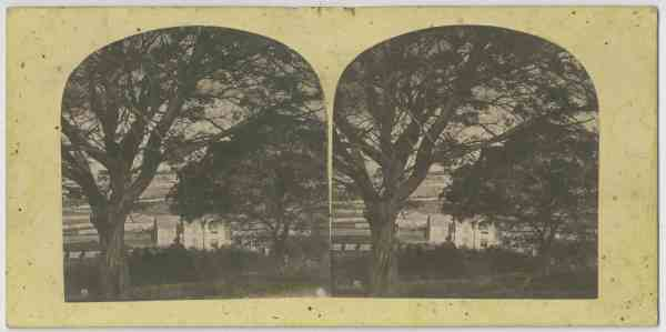 New Town Public School, Hobart, Tasmania 1860s