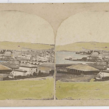 Nevin's stereograph of the abbatoir and cattleyard Hobart 1870
