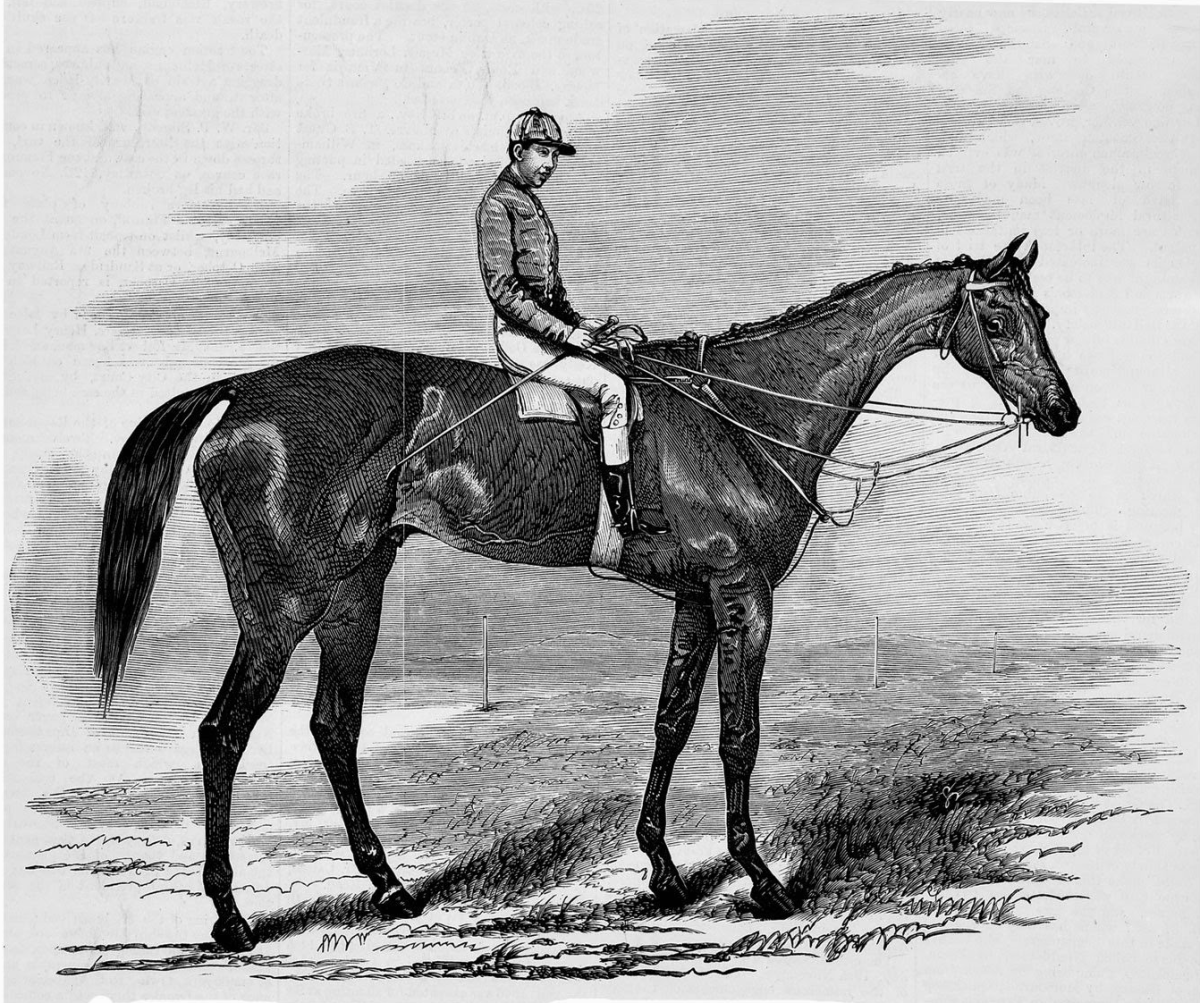 Captain Goldsmith, three bloodstock fillies and a larboard collision